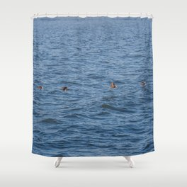 Lucky fishers-puffins Shower Curtain