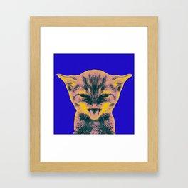 Pop Art Kitten 1 Framed Art Print