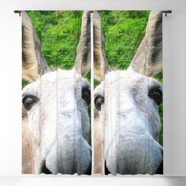 Watercolor Wild Donkey 01, Hi! Blackout Curtain