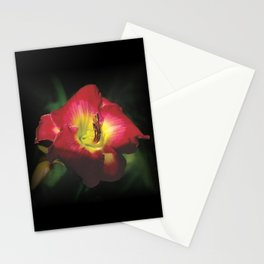 Glorious red daylily Joan Derifield Stationery Cards