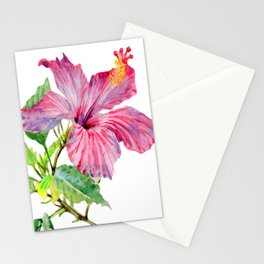 Tropical Pink Hibiscus Watercolor Stationery Cards