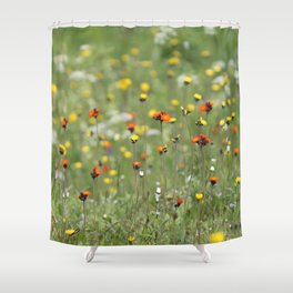 Blooming summer field Shower Curtain