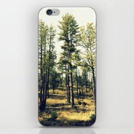 talltrees iPhone Skin