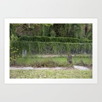 Two Fences Art Print