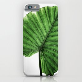 Leaves 11 iPhone Case
