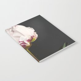 Peony - simply perfect Notebook