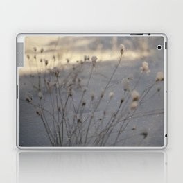 winter dust Laptop & iPad Skin