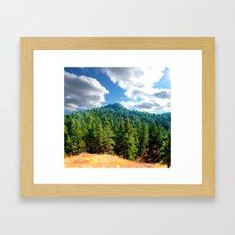 Bear Lodge Framed Art Print