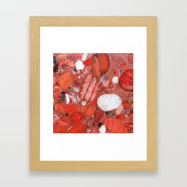 Conglomerate marble pebbles Framed Art Print