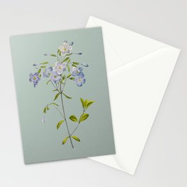 Vintage Phlox Botanical Illustration on Mint Green Stationery Cards