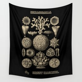 """Hexacoralla"" from ""Art Forms of Nature"" by Ernst Haeckel Wall Tapestry"