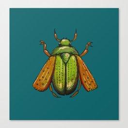 Beetle Wings Canvas Print
