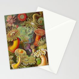 Vintage Sealife Underwater Stationery Cards