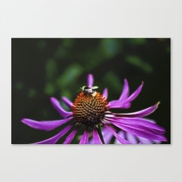 Electric Bee Canvas Print