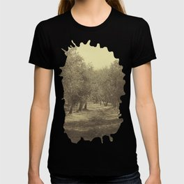 Autumn in Tuscany 03 T-shirt