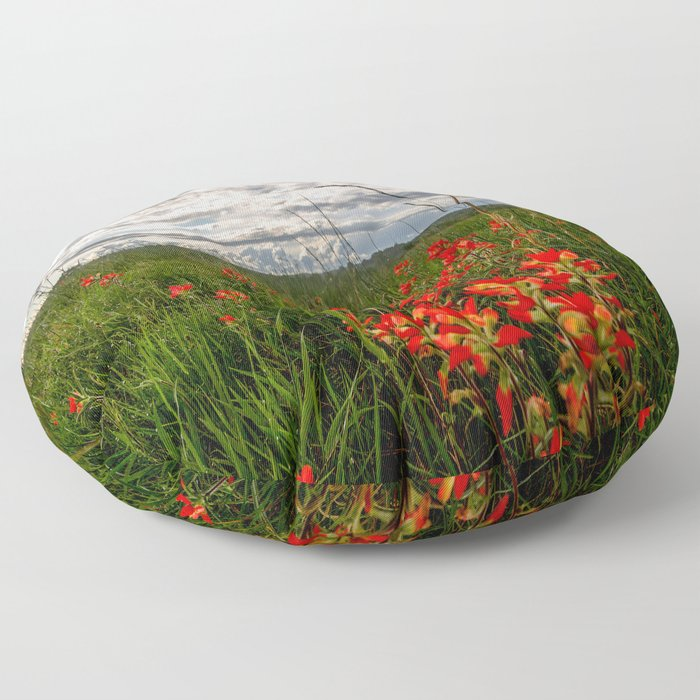 Brighten the Day - Indian Paintbrush Wildflowers in Eastern Oklahoma Floor Pillow