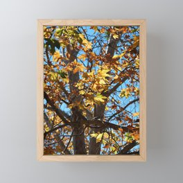 Fall Time Tree Framed Mini Art Print