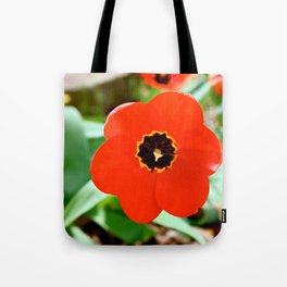 Red Portal Tote Bag