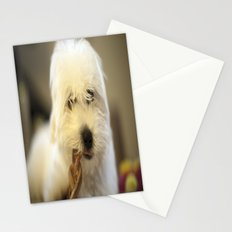 Moriarty & The Bully Stick Stationery Cards