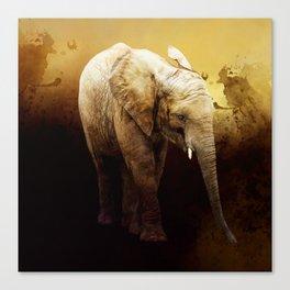 The cute elephant calf Canvas Print