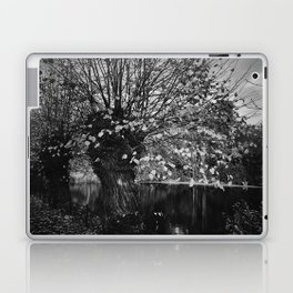 Ghost in the willow Laptop & iPad Skin