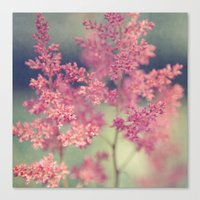 coral Canvas Prints featuring Coral by Sandra Arduini