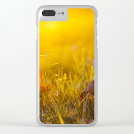 The fallen maple leaves Clear iPhone Case