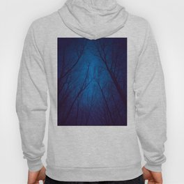 I Have Loved the Stars too Fondly Hoody