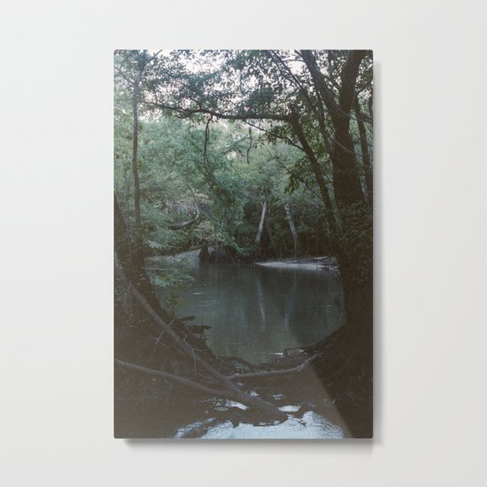 Drabby Swampy Creek Metal Print