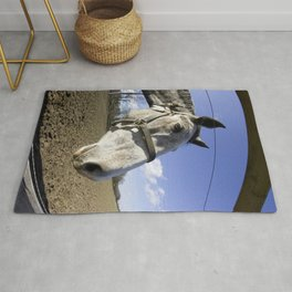 Horse of Don Quixote Rug