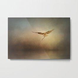 Nesting Osprey Metal Print