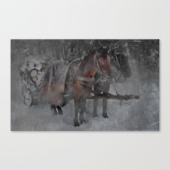 Those wild winter days Canvas Print