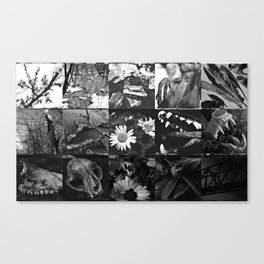 Greyscale collage Canvas Print