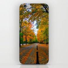 Fall road iPhone & iPod Skin