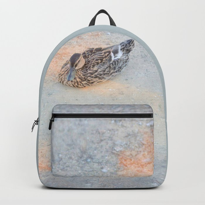Mallard Duck resting Backpack