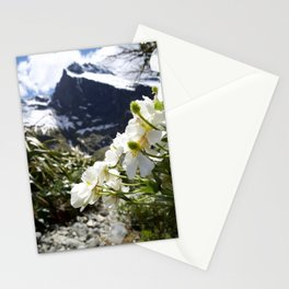 White Flowers and Mountain Pass (Milford Sound) Stationery Cards