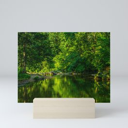 Emerald Reflection Mini Art Print