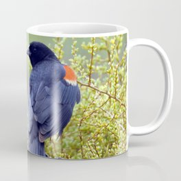 Tijuana Slough Male Redwing Blackbird Coffee Mug