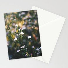 Chasing Forgotten Dreams Stationery Cards