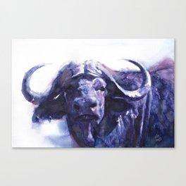 Botswana Buffalo Canvas Print