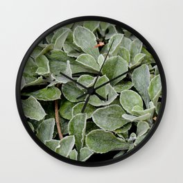 Green. Wall Clock