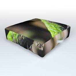 Narcied bats Outdoor Floor Cushion