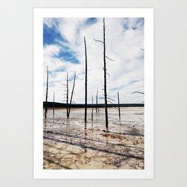 Yellowstone National Park 2 Art Print