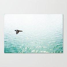 VUELING Canvas Print