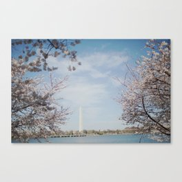 Washington in Spring Canvas Print