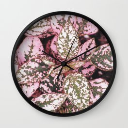 Green veined pink leaves Wall Clock