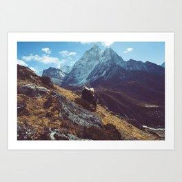 Yak amongst the Himalayan mountains, Nepal Art Print