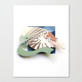 Mrs. Chambered Nautilus Canvas Print