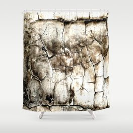 Lead Paint Forever Shower Curtain
