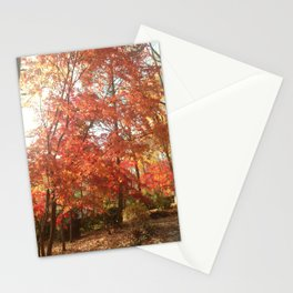 Maplewood - Fall Stationery Cards